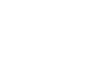 Homepage Logo Terry Riney Agency